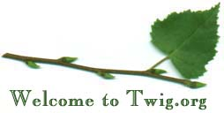 Welcome to twig.org